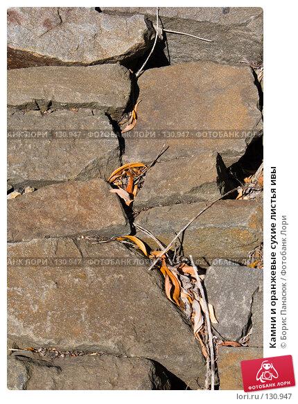 Камни и оранжевые сухие листья ивы, фото № 130947, снято 17 августа 2007 г. (c) Борис Панасюк / Фотобанк Лори