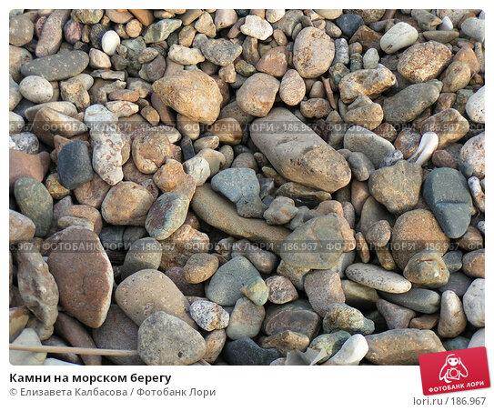 Камни на морском берегу, фото № 186967, снято 31 мая 2006 г. (c) Елизавета Калбасова / Фотобанк Лори