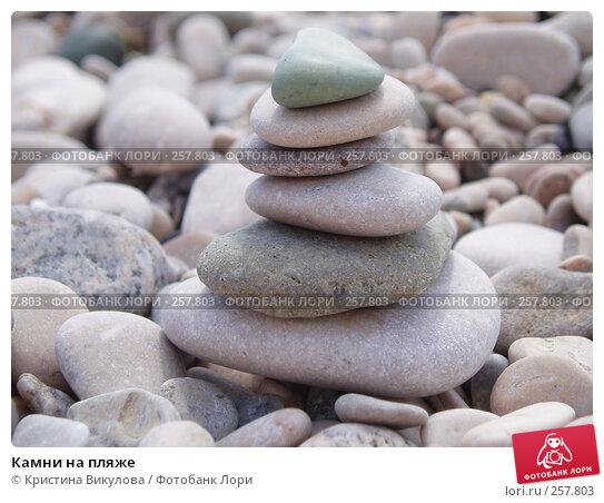Камни на пляже, фото № 257803, снято 11 сентября 2006 г. (c) Кристина Викулова / Фотобанк Лори