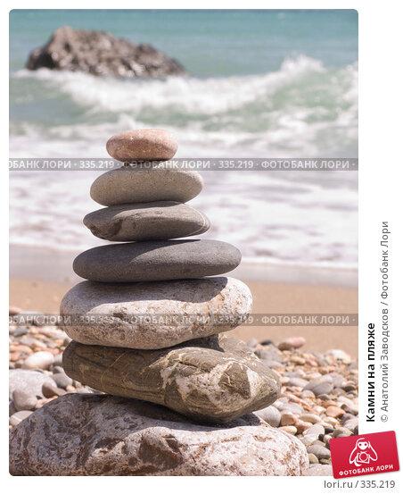 Камни на пляже, фото № 335219, снято 5 июня 2008 г. (c) Анатолий Заводсков / Фотобанк Лори