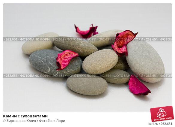 Камни с сухоцветами, фото № 262651, снято 24 апреля 2008 г. (c) Биржанова Юлия / Фотобанк Лори