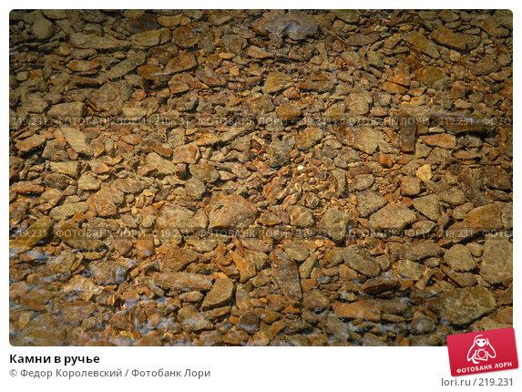 Камни в ручье, фото № 219231, снято 10 августа 2006 г. (c) Федор Королевский / Фотобанк Лори