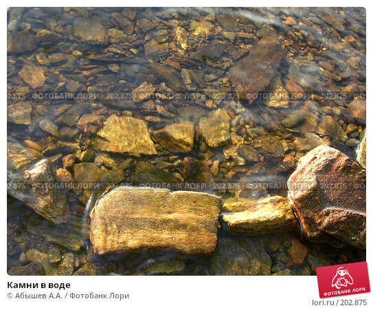 Камни в воде, фото № 202875, снято 14 июля 2007 г. (c) Абышев А.А. / Фотобанк Лори