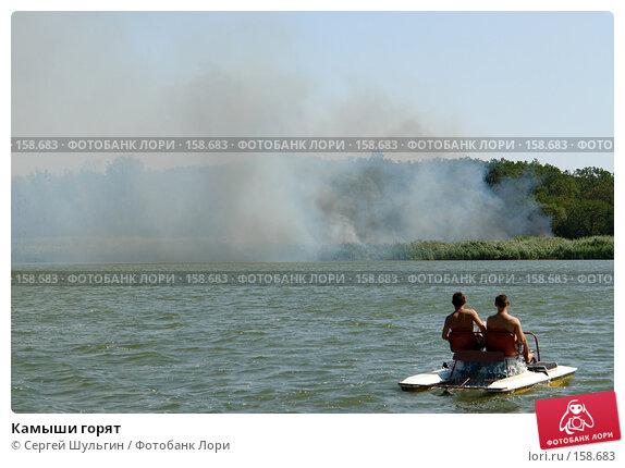 Камыши горят, фото № 158683, снято 21 августа 2007 г. (c) Сергей Шульгин / Фотобанк Лори