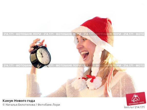 Купить «Канун Нового года», фото № 214171, снято 24 ноября 2007 г. (c) Наталья Белотелова / Фотобанк Лори