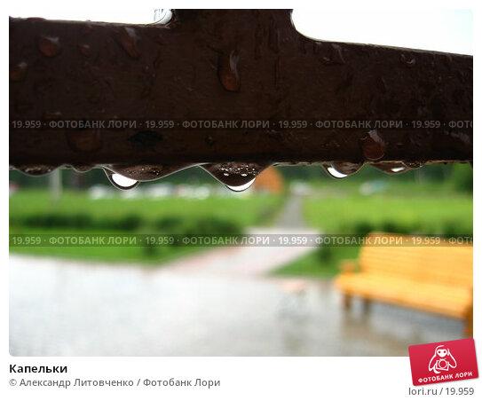 Капельки, фото № 19959, снято 16 июля 2006 г. (c) Александр Литовченко / Фотобанк Лори