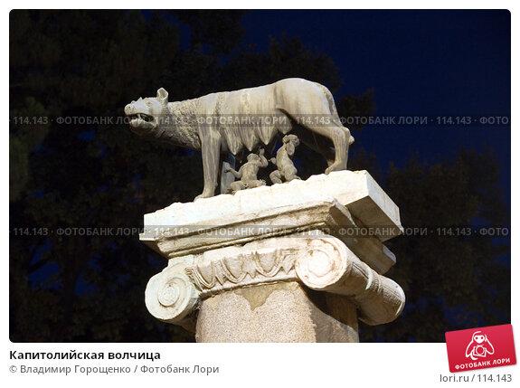 Купить «Капитолийская волчица», фото № 114143, снято 29 июля 2007 г. (c) Владимир Горощенко / Фотобанк Лори
