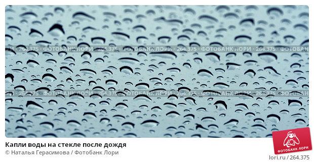 Капли воды на стекле после дождя, фото № 264375, снято 27 апреля 2008 г. (c) Наталья Герасимова / Фотобанк Лори