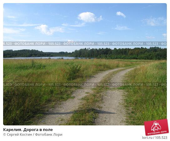 Карелия. Дорога в поле, фото № 105523, снято 13 августа 2007 г. (c) Сергей Костин / Фотобанк Лори