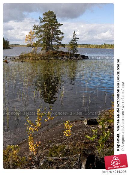 Карелия, маленький островок на Вокшозере, фото № 214295, снято 16 сентября 2007 г. (c) Андрюхина Анастасия / Фотобанк Лори