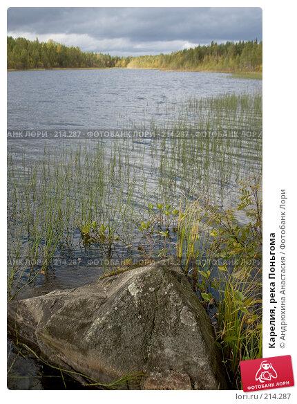 Карелия, река Поньгома, фото № 214287, снято 15 сентября 2007 г. (c) Андрюхина Анастасия / Фотобанк Лори