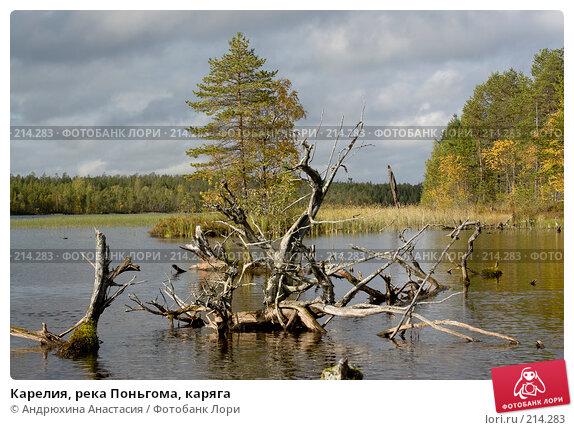 Карелия, река Поньгома, каряга, фото № 214283, снято 15 сентября 2007 г. (c) Андрюхина Анастасия / Фотобанк Лори