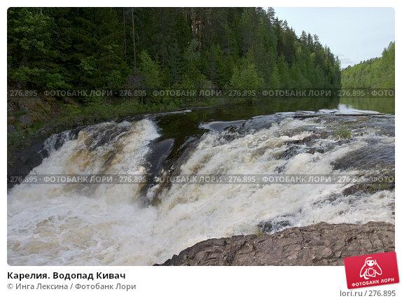 Карелия. Водопад Кивач, фото № 276895, снято 10 июня 2007 г. (c) Инга Лексина / Фотобанк Лори