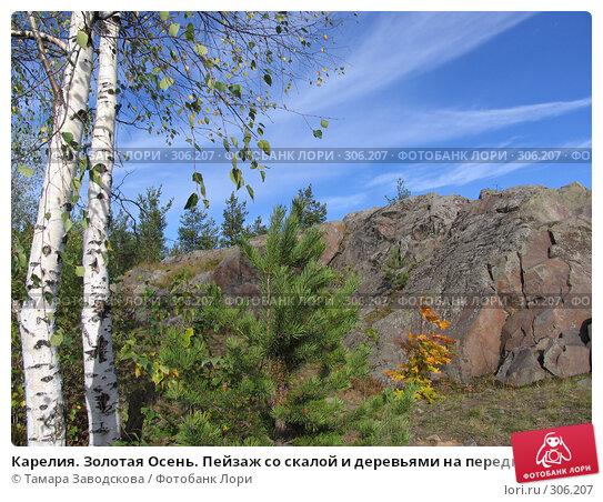 Купить «Карелия. Золотая Осень. Пейзаж со скалой и деревьями на переднем плане», эксклюзивное фото № 306207, снято 26 сентября 2006 г. (c) Тамара Заводскова / Фотобанк Лори
