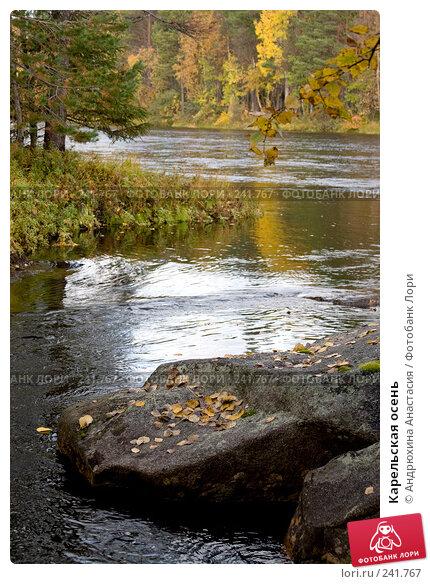 Карельская осень, фото № 241767, снято 23 сентября 2007 г. (c) Андрюхина Анастасия / Фотобанк Лори