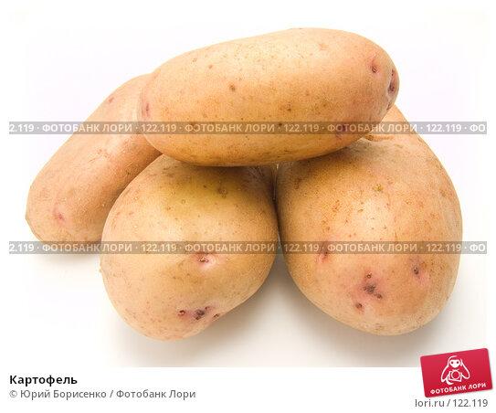 Купить «Картофель», фото № 122119, снято 15 сентября 2007 г. (c) Юрий Борисенко / Фотобанк Лори