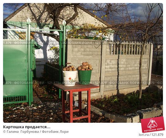 Купить «Картошка продается...», фото № 121879, снято 1 ноября 2006 г. (c) Галина  Горбунова / Фотобанк Лори