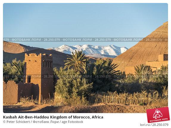 Купить «Kasbah Ait-Ben-Haddou Kingdom of Morocco, Africa», фото № 28250079, снято 11 февраля 2018 г. (c) age Fotostock / Фотобанк Лори