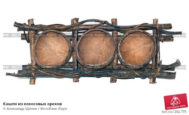 Кашпо из кокосовых орехов, эксклюзивное фото № 202775, снято 1 января 2008 г. (c) Александр Щепин / Фотобанк Лори