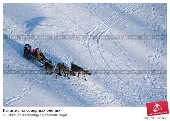 Купить «Катание на северных оленях», фото № 188035, снято 27 января 2008 г. (c) Сайганов Александр / Фотобанк Лори