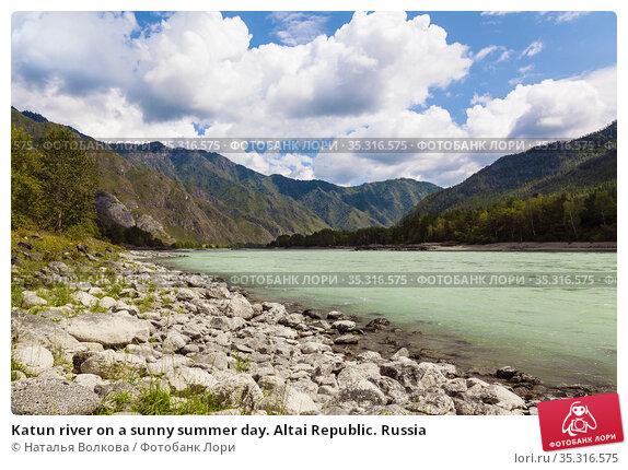 Katun river on a sunny summer day. Altai Republic. Russia. Стоковое фото, фотограф Наталья Волкова / Фотобанк Лори