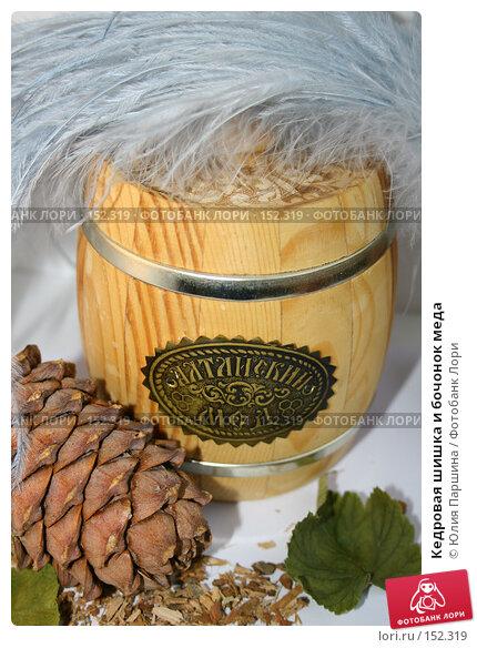 Кедровая шишка и бочонок меда, фото № 152319, снято 24 ноября 2007 г. (c) Юлия Паршина / Фотобанк Лори