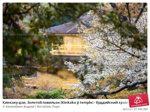 Купить «Кинкаку-дзи, Золотой павильон (Kinkaku-ji temple) - буддийский храм в Киото, Япония. Вид сквозь ветки сакуры. Фокус на ветви», фото № 27143355, снято 12 апреля 2013 г. (c) Кекяляйнен Андрей / Фотобанк Лори