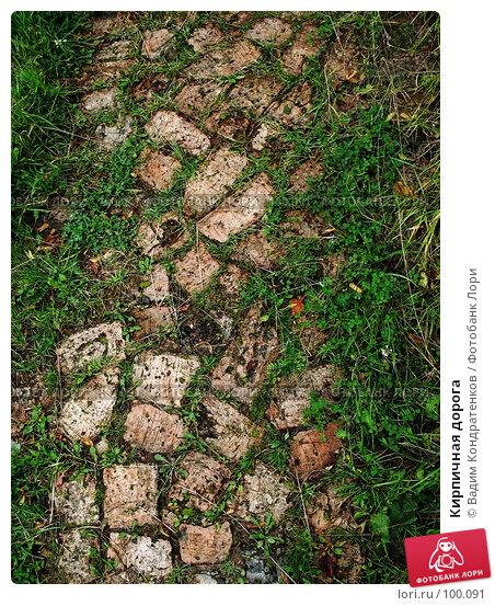 Кирпичная дорога, фото № 100091, снято 23 августа 2017 г. (c) Вадим Кондратенков / Фотобанк Лори