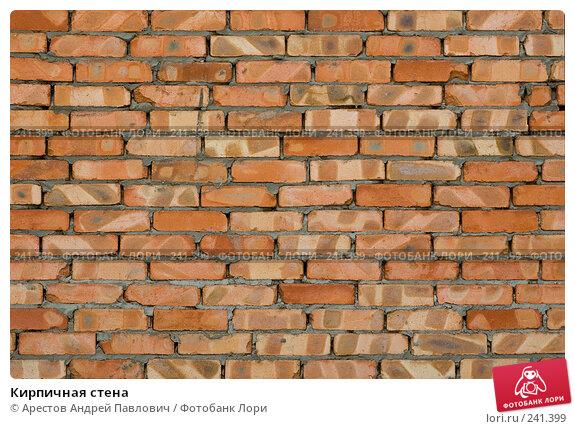 Купить «Кирпичная стена», фото № 241399, снято 30 марта 2008 г. (c) Арестов Андрей Павлович / Фотобанк Лори