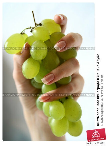 Кисть зеленого винограда в женской руке, фото № 52611, снято 13 июля 2006 г. (c) Ольга Красавина / Фотобанк Лори