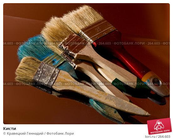 Купить «Кисти», фото № 264603, снято 9 октября 2005 г. (c) Кравецкий Геннадий / Фотобанк Лори