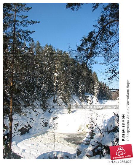 Кивач зимой, фото № 286027, снято 25 февраля 2007 г. (c) Безрукова Ирина / Фотобанк Лори