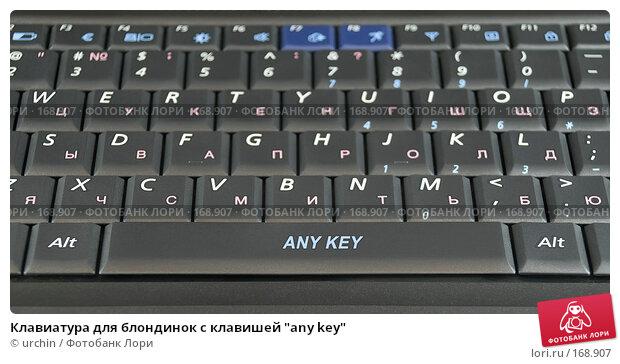 "Клавиатура для блондинок с клавишей ""any key"", фото № 168907, снято 7 января 2008 г. (c) urchin / Фотобанк Лори"