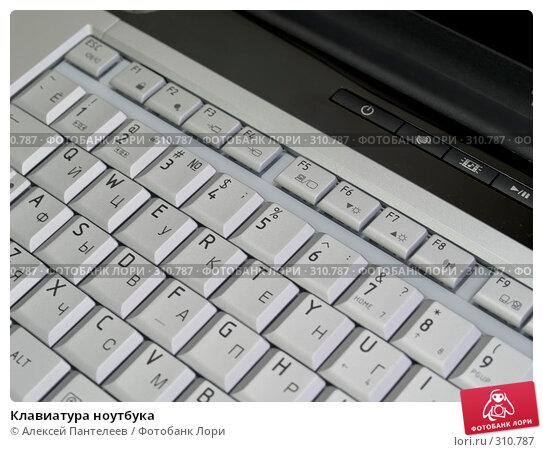 Купить «Клавиатура ноутбука», фото № 310787, снято 4 июня 2008 г. (c) Алексей Пантелеев / Фотобанк Лори
