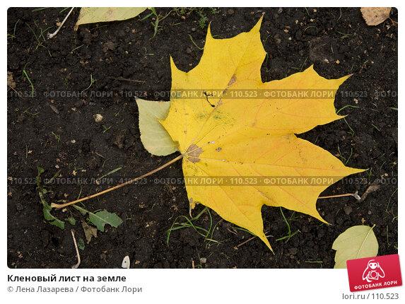 Кленовый лист на земле, фото № 110523, снято 25 октября 2007 г. (c) Лена Лазарева / Фотобанк Лори
