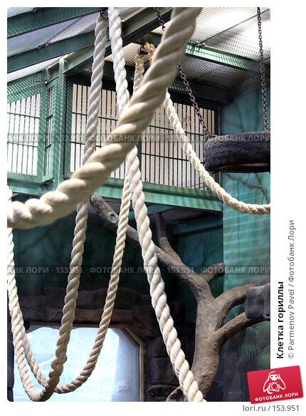 Клетка гориллы, фото № 153951, снято 11 декабря 2007 г. (c) Parmenov Pavel / Фотобанк Лори