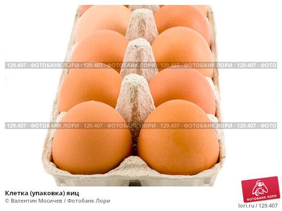 Клетка (упаковка) яиц, фото № 129407, снято 17 марта 2007 г. (c) Валентин Мосичев / Фотобанк Лори