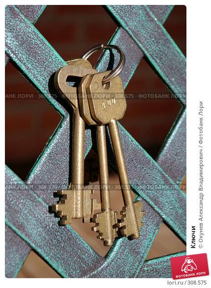 Купить «Ключи», фото № 308575, снято 2 июня 2008 г. (c) Окунев Александр Владимирович / Фотобанк Лори