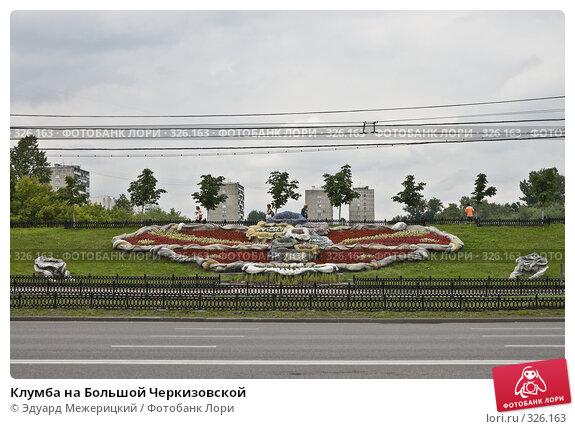 Клумба на Большой Черкизовской, фото № 326163, снято 16 июня 2008 г. (c) Эдуард Межерицкий / Фотобанк Лори