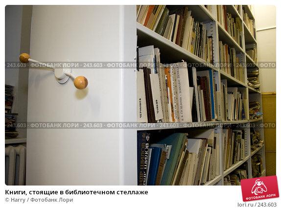 Купить «Книги, стоящие в библиотечном стеллаже», фото № 243603, снято 28 декабря 2007 г. (c) Harry / Фотобанк Лори