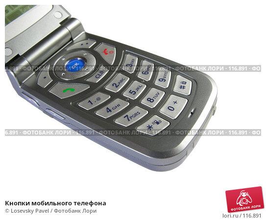 Купить «Кнопки мобильного телефона», фото № 116891, снято 13 февраля 2006 г. (c) Losevsky Pavel / Фотобанк Лори