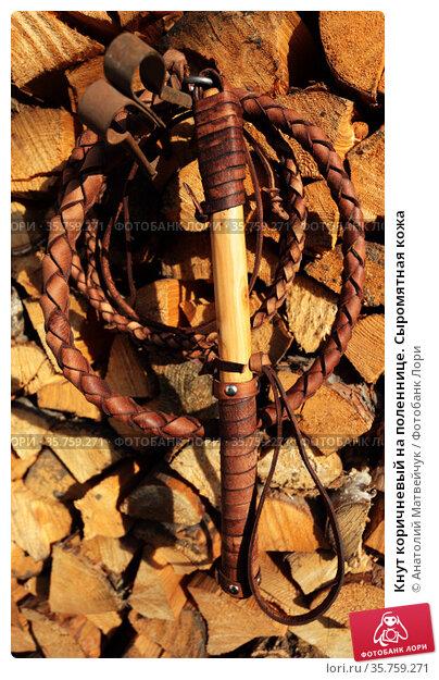 Кнут коричневый на поленнице. Сыромятная кожа. Стоковое фото, фотограф Анатолий Матвейчук / Фотобанк Лори