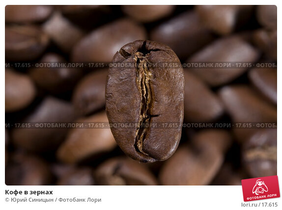 Кофе в зернах, фото № 17615, снято 5 февраля 2007 г. (c) Юрий Синицын / Фотобанк Лори
