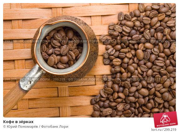 Кофе в зёрнах, фото № 299219, снято 5 апреля 2008 г. (c) Юрий Пономарёв / Фотобанк Лори