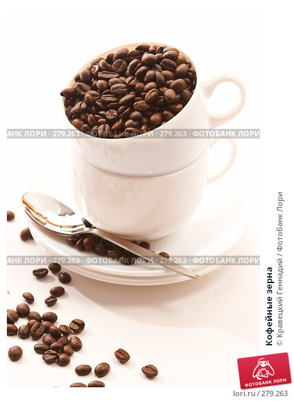 Купить «Кофейные зерна», фото № 279263, снято 9 ноября 2005 г. (c) Кравецкий Геннадий / Фотобанк Лори