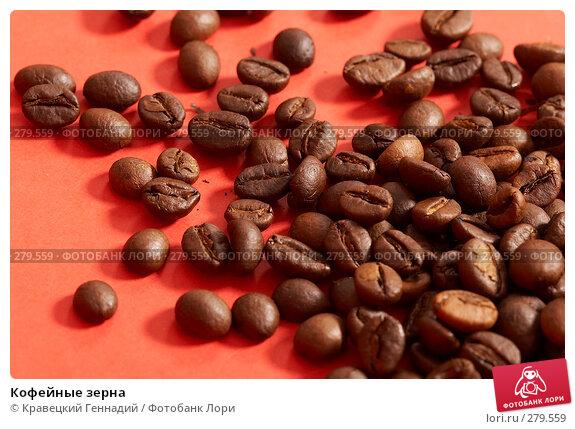 Кофейные зерна, фото № 279559, снято 8 января 2005 г. (c) Кравецкий Геннадий / Фотобанк Лори