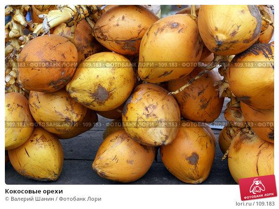 Кокосовые орехи, фото № 109183, снято 15 июня 2007 г. (c) Валерий Шанин / Фотобанк Лори