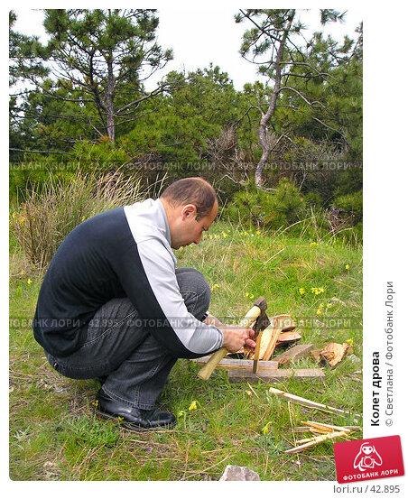 Колет дрова, фото № 42895, снято 6 мая 2007 г. (c) Светлана / Фотобанк Лори