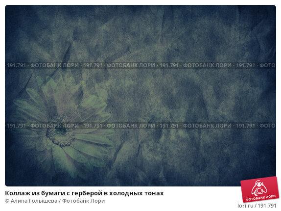 Коллаж из бумаги с герберой в холодных тонах, эксклюзивное фото № 191791, снято 26 мая 2017 г. (c) Алина Голышева / Фотобанк Лори