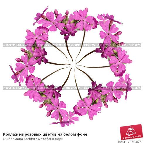 Коллаж из розовых цветов на белом фоне, фото № 130875, снято 8 мая 2006 г. (c) Абрамова Ксения / Фотобанк Лори